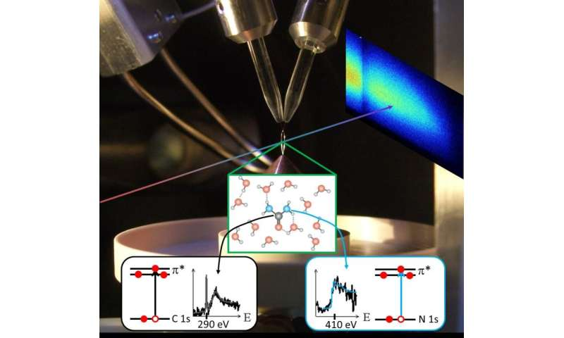 Looking at molecules from two sides with table-top femtosecond soft-X-rays