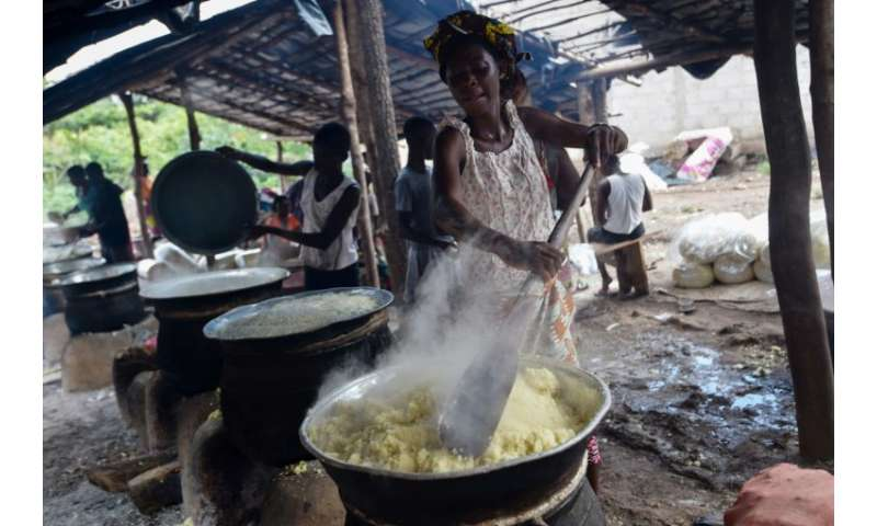 Mania for manioc: No meal in Ivory Coast is complete without a side dish of cassava semolina, called attieke