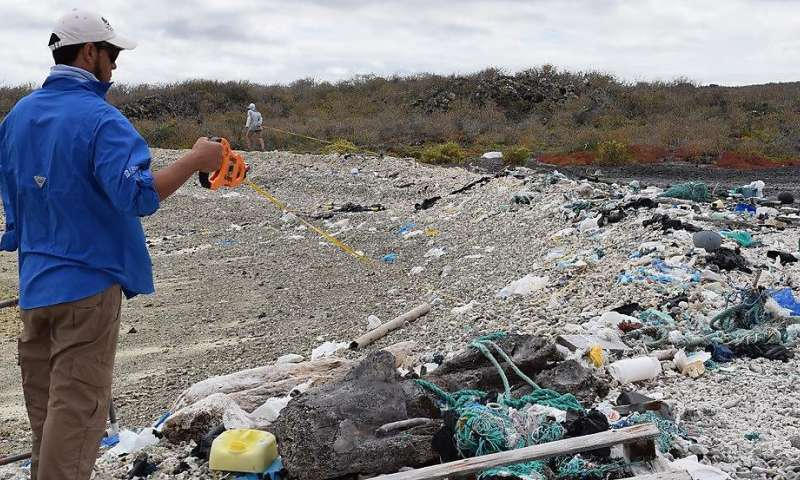 Marine litter expert supports efforts to eliminate plastic pollution from the Galapagos Islands