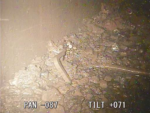 Melted nuclear fuel seen inside second Fukushima reactor