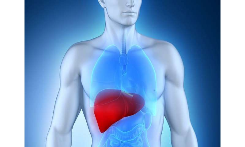 Metabolic syndrome common with chronic hep B infection