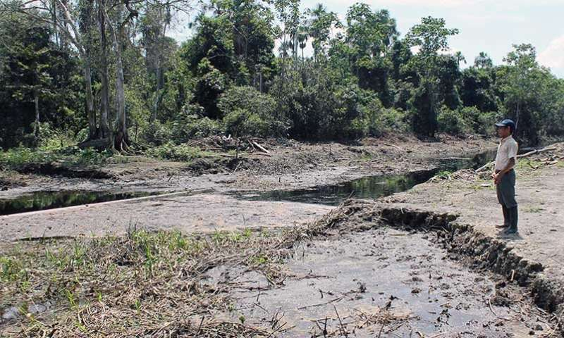 Metals known to have harmful health effects found in indigenous exposed to oil spills