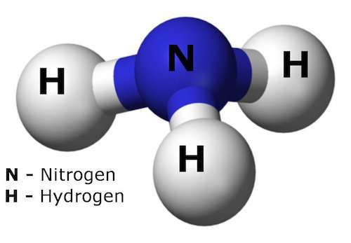 Missing link for solar hydrogen is    ammonia?