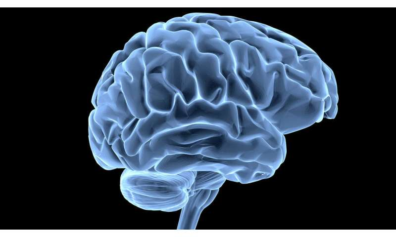 Mitochondria may protect brain against Parkinson's