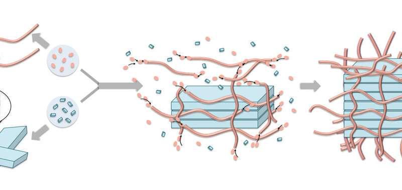 Molecular Scaffolding Aids Construction at the Nanoscale