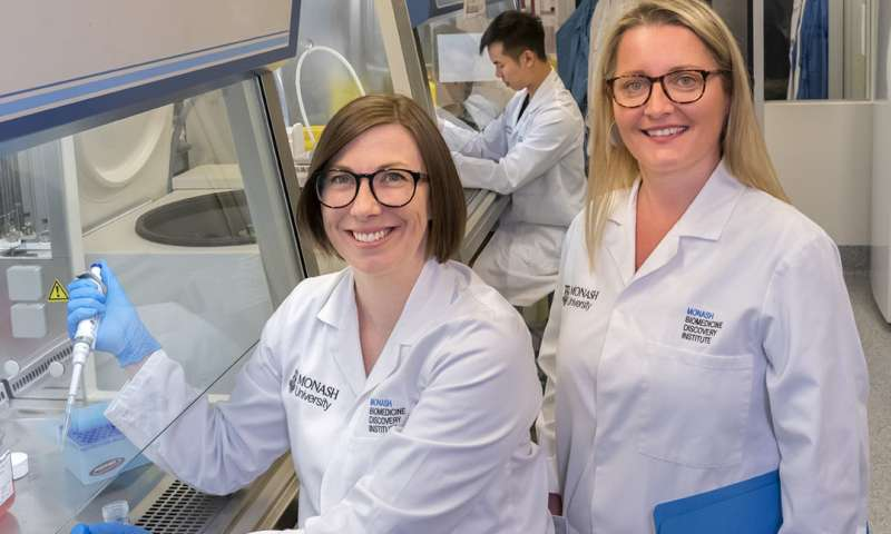 Monash research provides insights into why older people respond poorly to cancer treatment