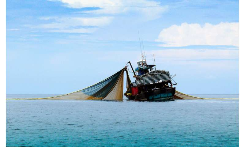 More in depth data is required to reveal the true global footprint of fishing