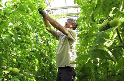 More organic than thou? Rebel farmers create new food label