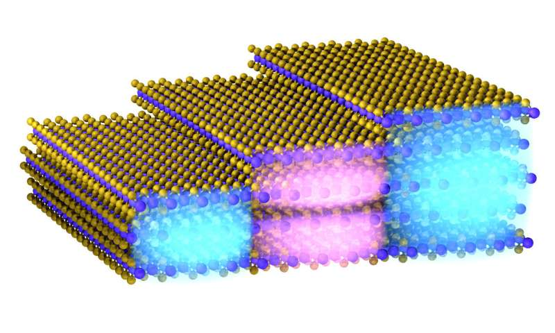 Nano-imaging of intersubband transitions in few-layer 2-D materials