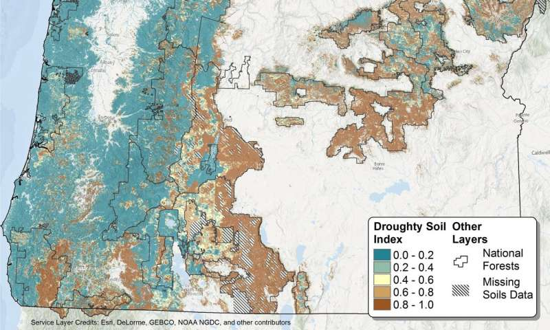 New 'droughty' soils model for Pacific Northwest could aid forest health in changing climate