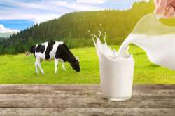 New five-minute milk scan for dairy industry