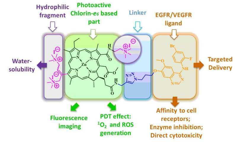 New highly selective antitumor photodynamic therapy agents synthesized