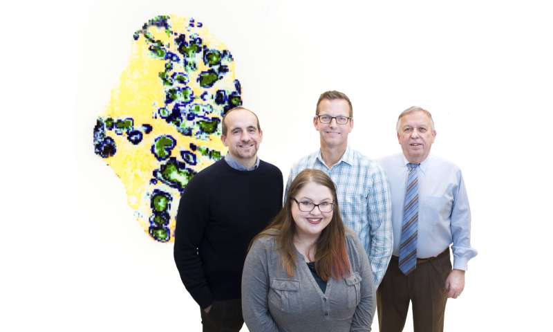 New imaging approach offers unprecedented views of staph infection