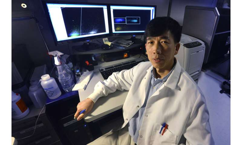 New receptor genes turn T-cells into powerful liver cancer foes