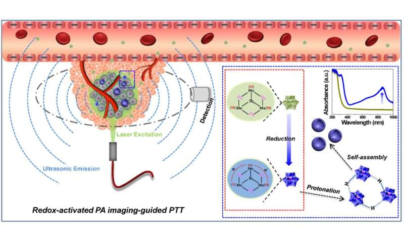 New theranostic strategy developed for precise tumor diagnosis and therapy