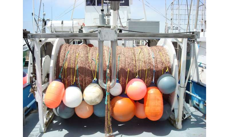 New tool improves fishing efficiency and sustainability