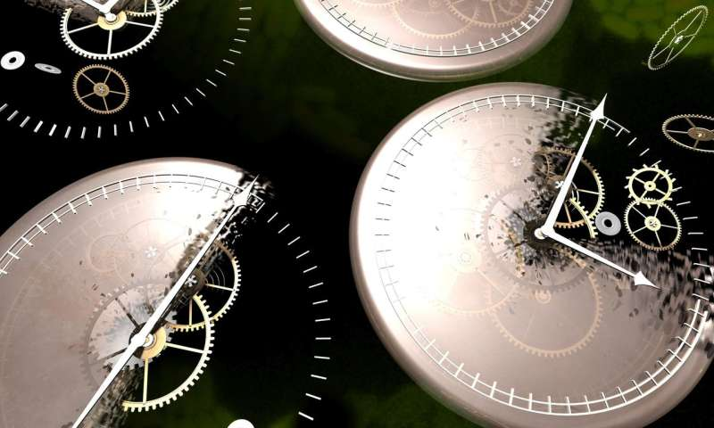Noise in the biorhythm: biological clocks respond differently to light fluctuations