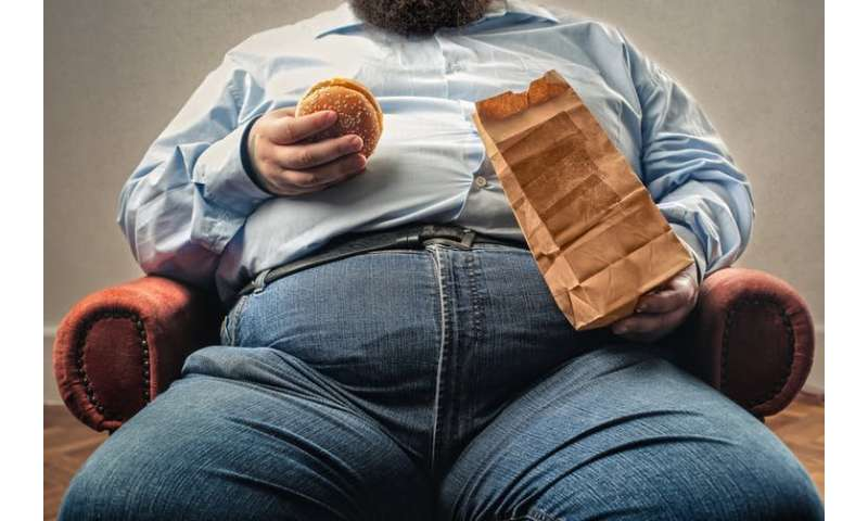 Obese people enjoy food less than lean people – new study