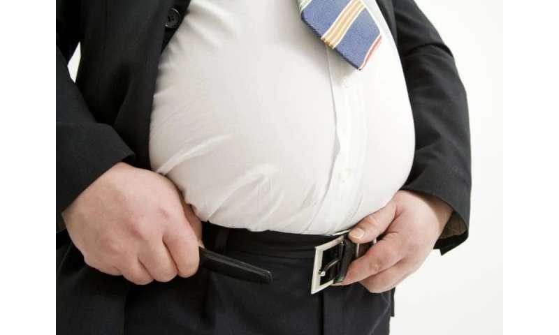 Obesity tops 35 percent in 7 U.S. states: report