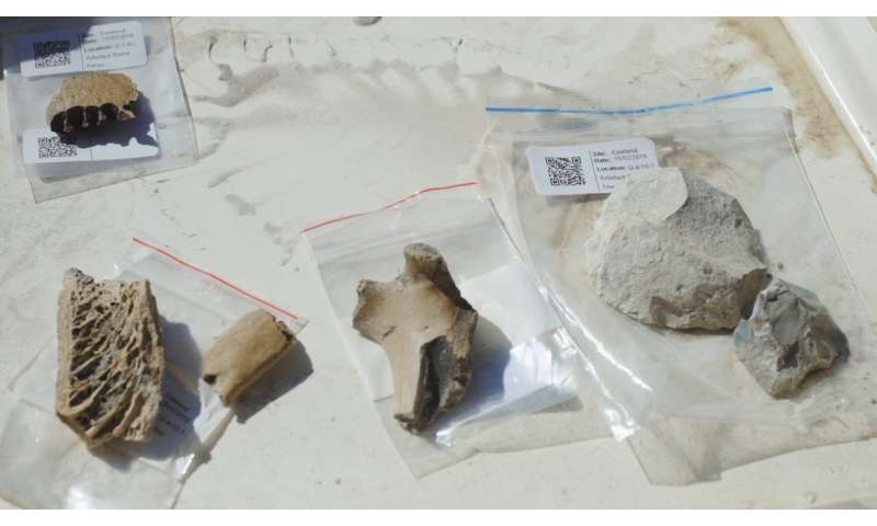 Old Maori village discovered by Otago archaeologists
