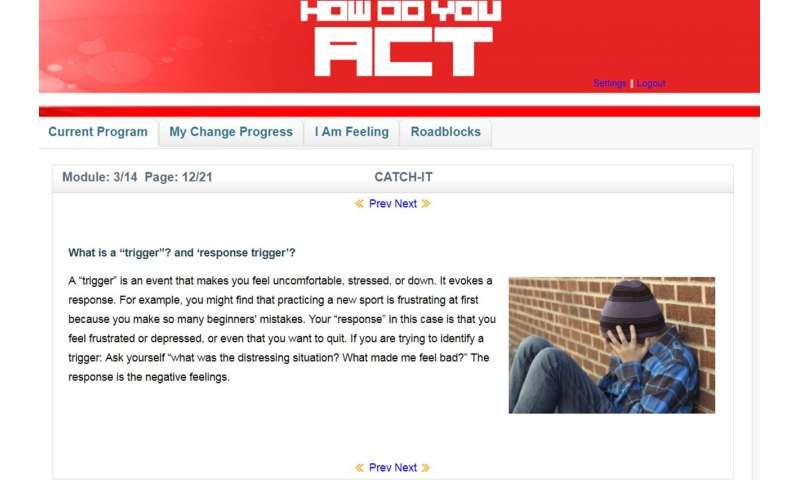 Online program helps prevent teen depression