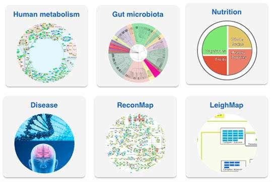Open database encapsulates worldwide knowledge of human metabolism