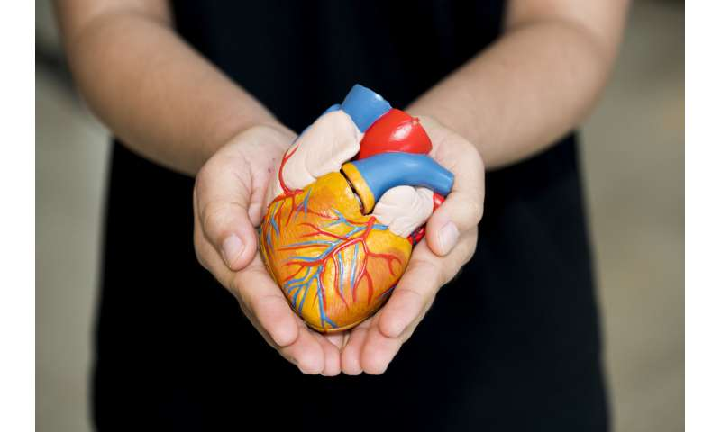 Organ transplants—knowing more about where donors live could save lives