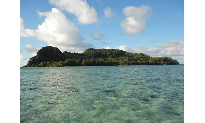 Pacific rats trace 2,000 years of human impact on island ecosystems