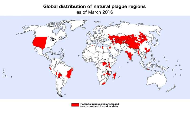 Plague bacteria may be hiding in common soil or water microbes