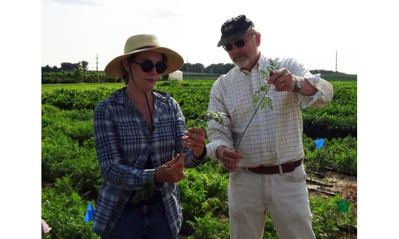Plant breeders balance shared innovation, revenue