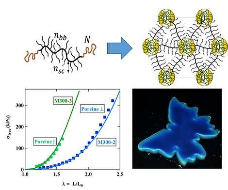 Polymers that mimic chameleon skin