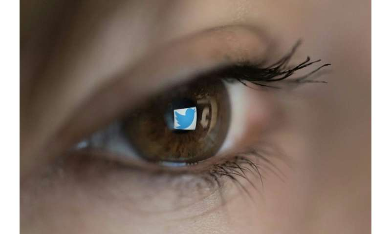 Prominent Twitter users in Southeast and East Asia have seen a surge in follows from anonymous, new Twitter accounts