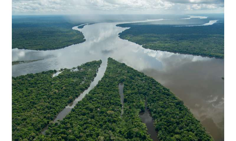 Protected areas could help boost Brazil's national economy, study finds