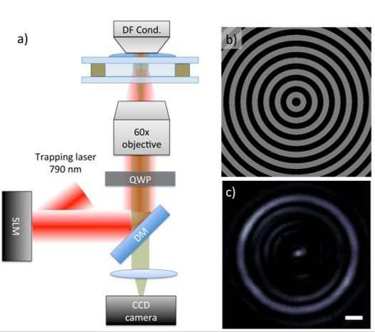 **Reactive optical matter: light-induced motion