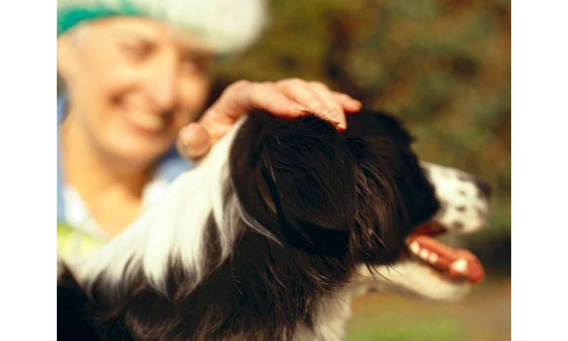 Report warns of dog illness that can spread to owners