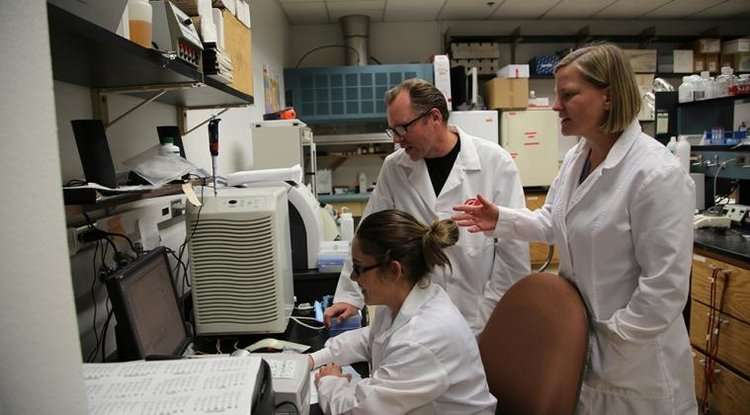 "Researcher uses ""shotgun sequencing"" to study microorganisms"