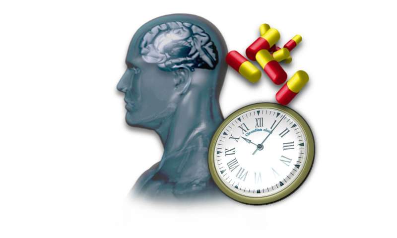 Revisiting existing drugs finds molecules that control body clocks