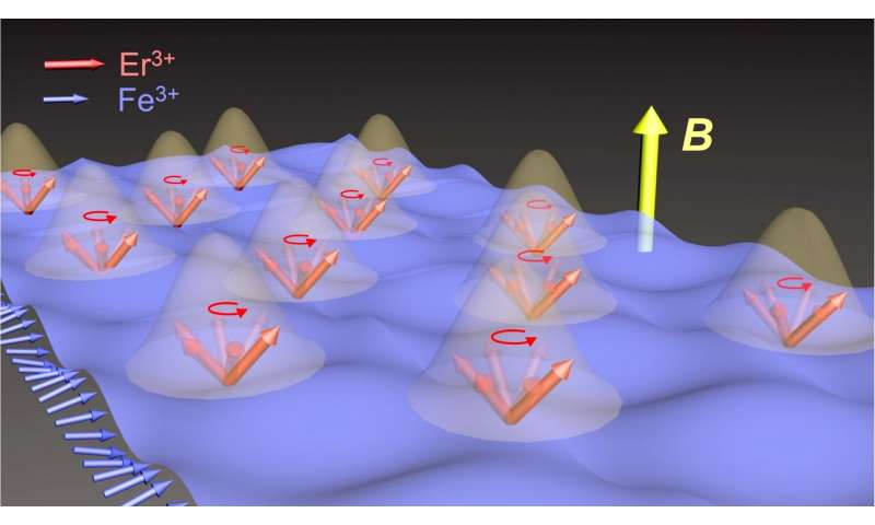 Rice U. lab finds evidence of matter-matter coupling