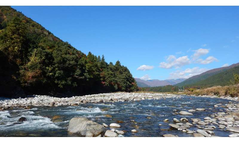 River complexity maintains regional population stability