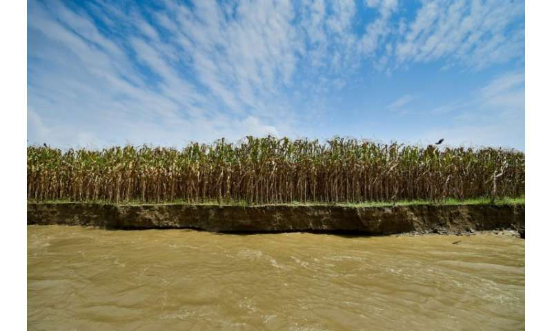 River erosion—though long a phenomenon in the delta nation—is rapidly accelerating due to climate change, experts say