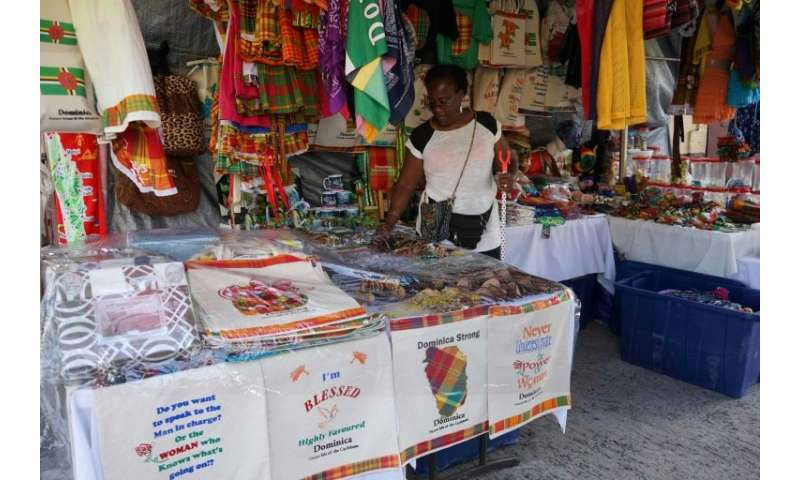 Roseau market stall vendor Augustina John says business has dropped by half