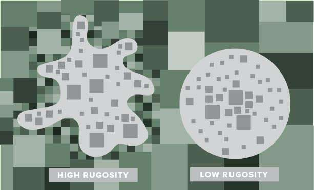 Rugosity and concentricity: In urban planning, look to edges, not just the core
