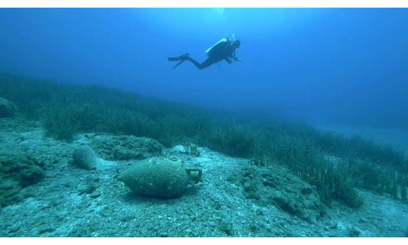 Seagrass meadows—an underwater time capsule for archaeology