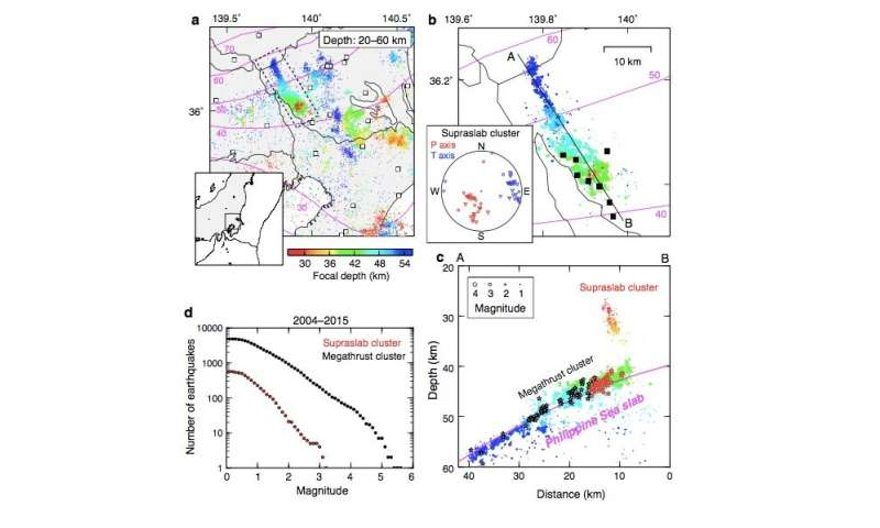 Shaking up megathrust earthquakes with slow slip and fluid drainage