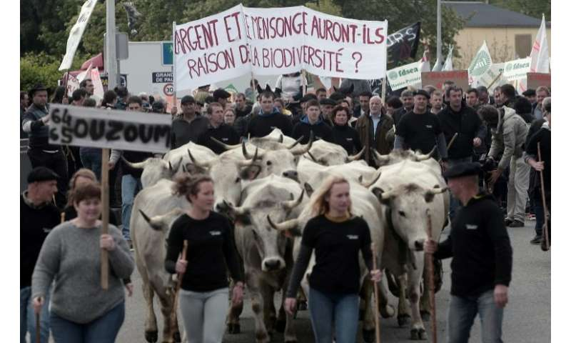Shepherds including from Spain protested against the release of bears in the Pyrenees, southwestern France
