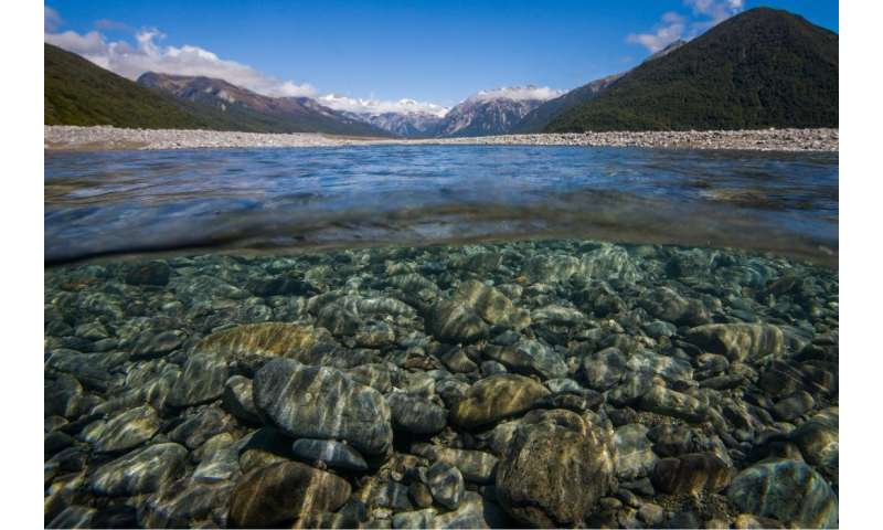 Shrinking rivers affect fish populations – new research