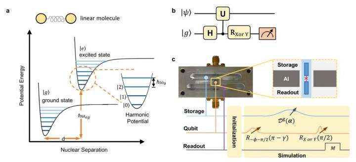 Simulating molecular spectroscopy with circuit quantum electrodynamics