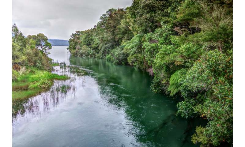 Six ways to improve water quality in New Zealand's lakes and rivers
