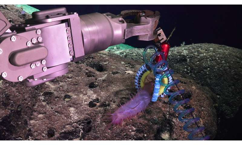 Soft robotics and 3D printing allow marine biologists to explore delicate deep-sea life