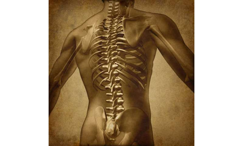 Spinal fusion surgery for lower back pain is costly, unsupported by evidence